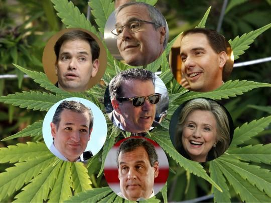 Where the 2016 presidential candidates stand on marijuana. Dear fellow cannabis advocate, choose the right person, please..