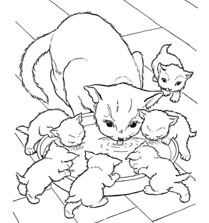 coloring pages animals httpfullcoloringcomcoloring pages - Coloring Pages Kittens Puppies