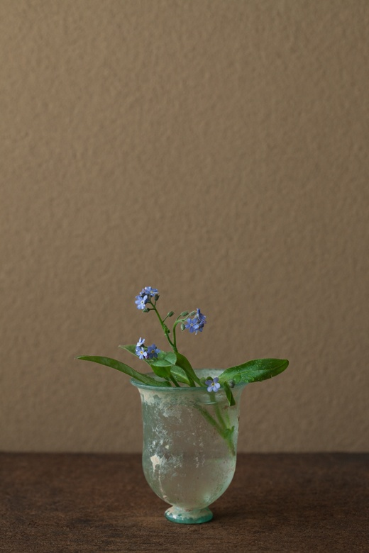 2012年4月26日(木)   よい名ですね。青い花は稀で、印象に残ります。   花=勿忘草(ワスレナグサ)   器=ローマングラス碗(ローマ時代)