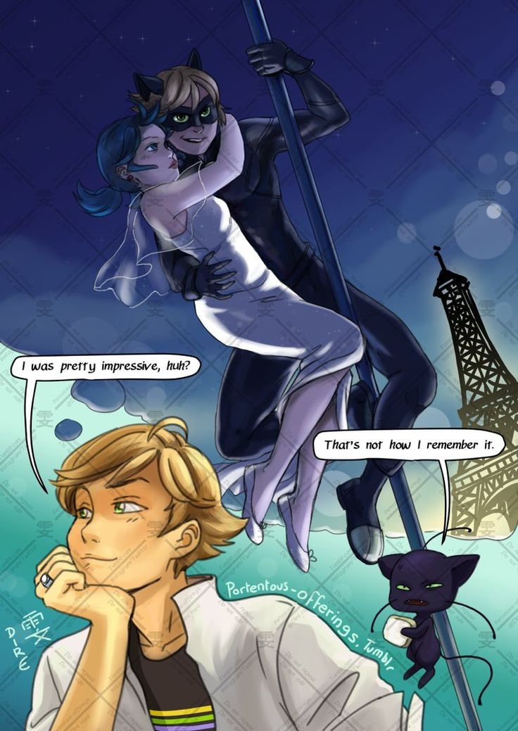 How Adrien remembers saving Marinette, lol (Miraculous Ladybug, plagg, chat noir)