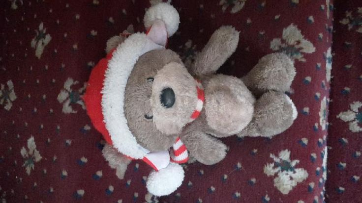 Found on 06 Apr. 2016 @ Guisborough Walkway and Forestry, TS14 8HD. Found sitting on a fence in the main car park. It was starting to hail so brought him home to give a wash and keep warm. Visit: https://whiteboomerang.com/lostteddy/msg/sp9zuf (Posted by Sarah-Jane on 06 Apr. 2016)