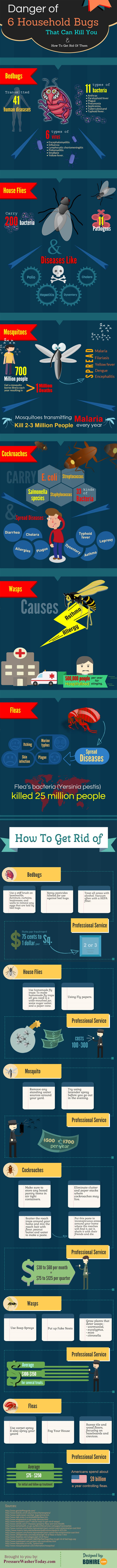 We all know that we must keep our home free of household bugs. But, what do we know about them? How serious threat are they on our health and safety? What are the things that needs to be done to eradicate them fully? Find out on the infographic below…
