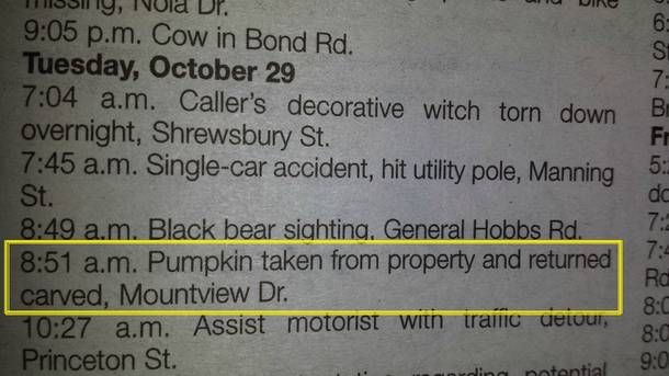 Small town police log #funny #small #town #police #humor #comedy #lol