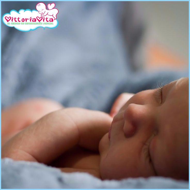 Con VittoriaVita se nacieron el cientos de niños (varones).  Junto con VittoriaVita se nacen los bebés nuevos. Son tanto chicos como chicas, y unos tienen la doble felicidad – gemelos a la vez. Pero aun así los chicos son el regalo más deseado para las parejas que esperaban mucho tiempo al nacimiento de su bebé. Los hijos se consideraban como los garantes de la perennidad de la familia y de su clan gracias a sus descendientes.