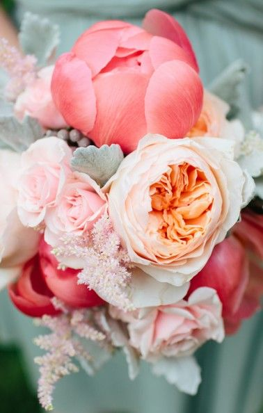 Peach garden roses and coral peonies, light pink spray rose and dusty miller. Love peonies.
