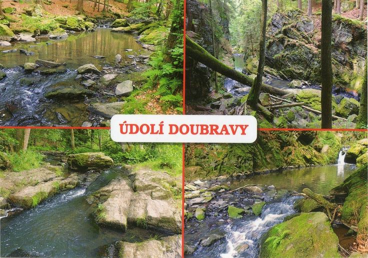CZE-8146 - Arrived: 2017.05.19   ---   Valley of river Doubrava