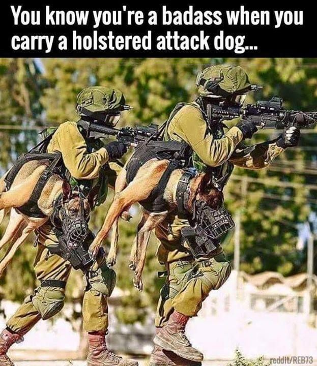 It's a fully automatic German Shepherd. It can chew into 6 terrorist asses a second. Pretty impressive weapon for your arsenal.