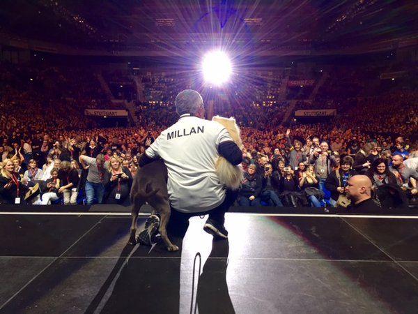 Cesar Millan Live -Thank you, Germany!
