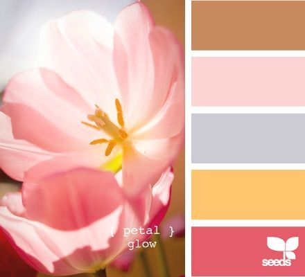 Don't want to repaint pale pink room. These colours could make it pop.
