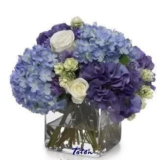 Hermoso centro de mesa con hortencias azules y rosas color crema!