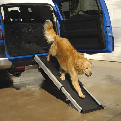 this pet ramp from wayfair canada has a gentle slope that provides assistance to dogs that