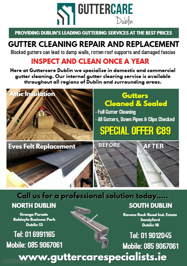 Pin By Padraig Franklin On My Work Cleaning Gutters Gutters Repair