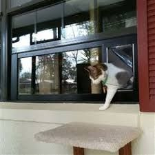 Image Result For Cat Door For Small Horizontal Sliding Window