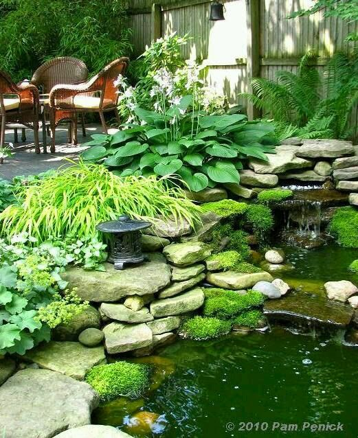 131 best images about hosta la vista baby on pinterest for Small yard ponds