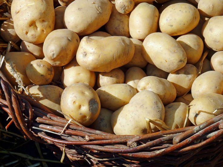 Nejchutnější strava brambory a jogurt – za tři dny zhubnete pět kilogramů!
