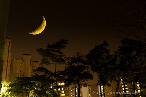 Path Behind SeokYeong University, Seoul, Korea