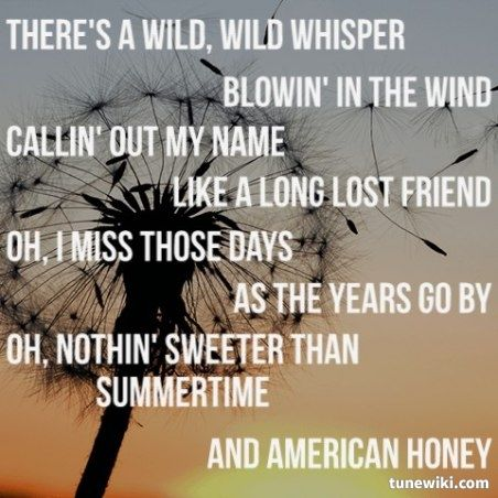 Lady Antebellum  ~ American Honey