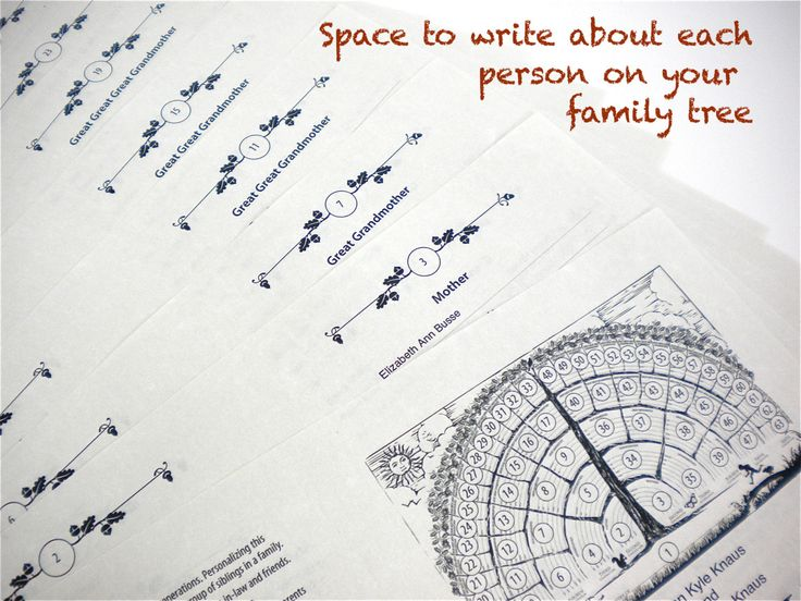 Family Tree Notebook Ebook pdf genealogy template, chart ancestry ...