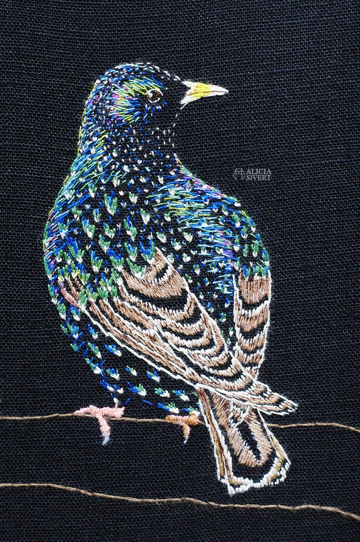 """Stare i praktdräkt"", starling embroidery by Alicia Sivertsson."