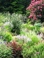 I love this deer resistant garden