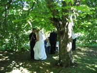 Wedding at Discovery Settlers Hotel Whangarei - beautiful surroundings