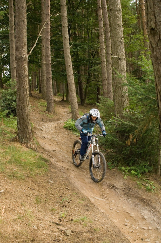 Hamsterley Forest in Durham - the perfect place for a Cycling break!