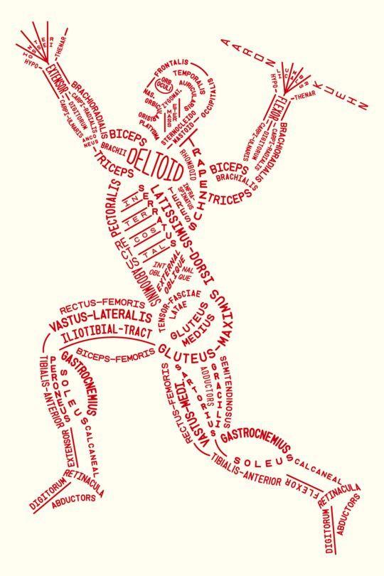 Aaron Kuehn's Skeleton and Muscle Typograms - Free PDFs for... | TrueBlueMeAndYou: DIYs for Creative People | Bloglovin'