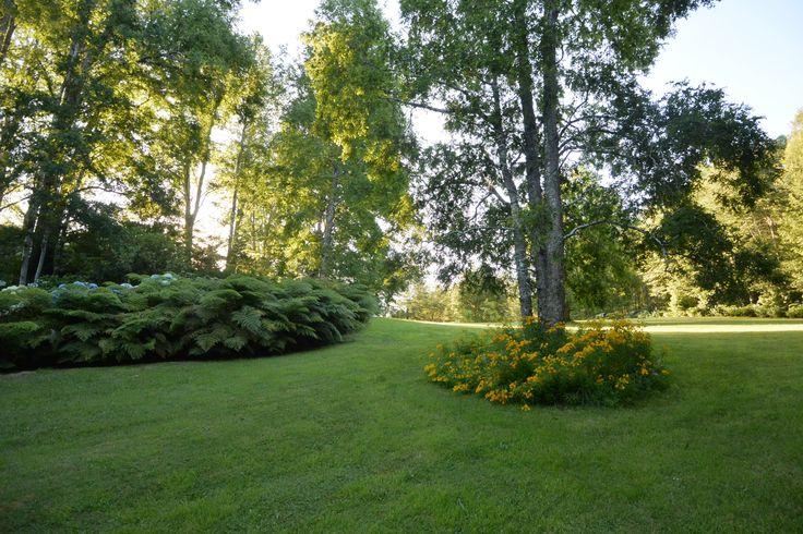Otro sector del jardin