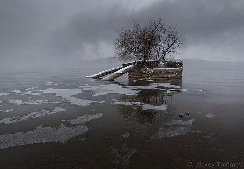 Алексей Трофимов - фотографии. 35фото