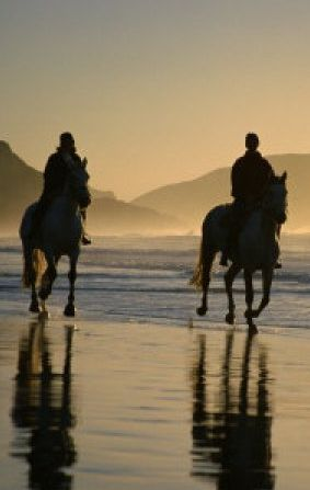 Sunrise horseback ride at the beach in Gisborne on the east coast of North Island, New Zealand
