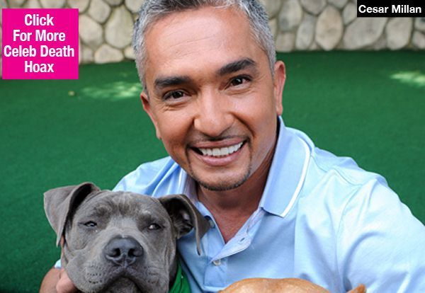 Cesar Millan Death Hoax: Dog Trainer Confirms 'I Am Alive' In New Video