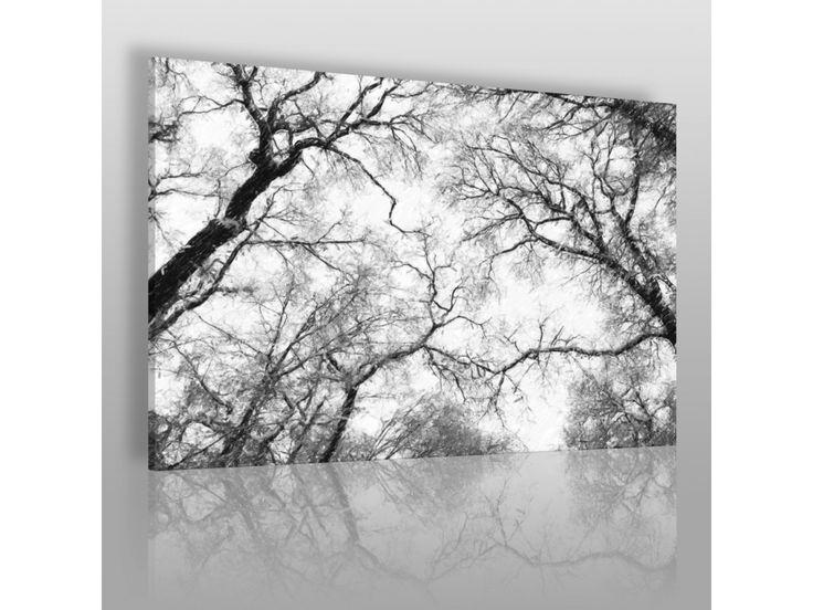 Eleganckie ujęcie natury - VAKU-DSGN | Obrazy na płótnie