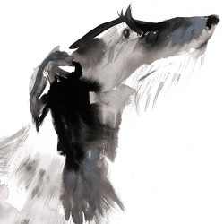 ink - sumi-e Scottish deerhound Sarah_Maycock_deerhound2