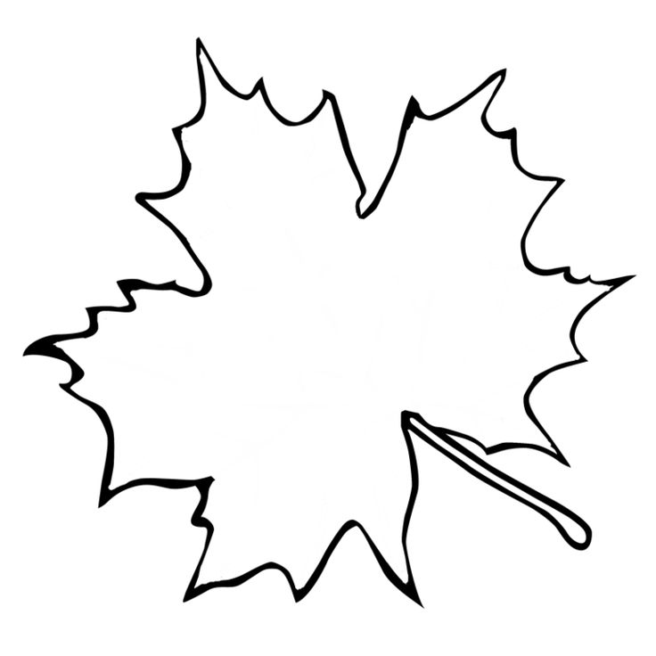Best  Leaf Outline Ideas On   Leaf Template Leave