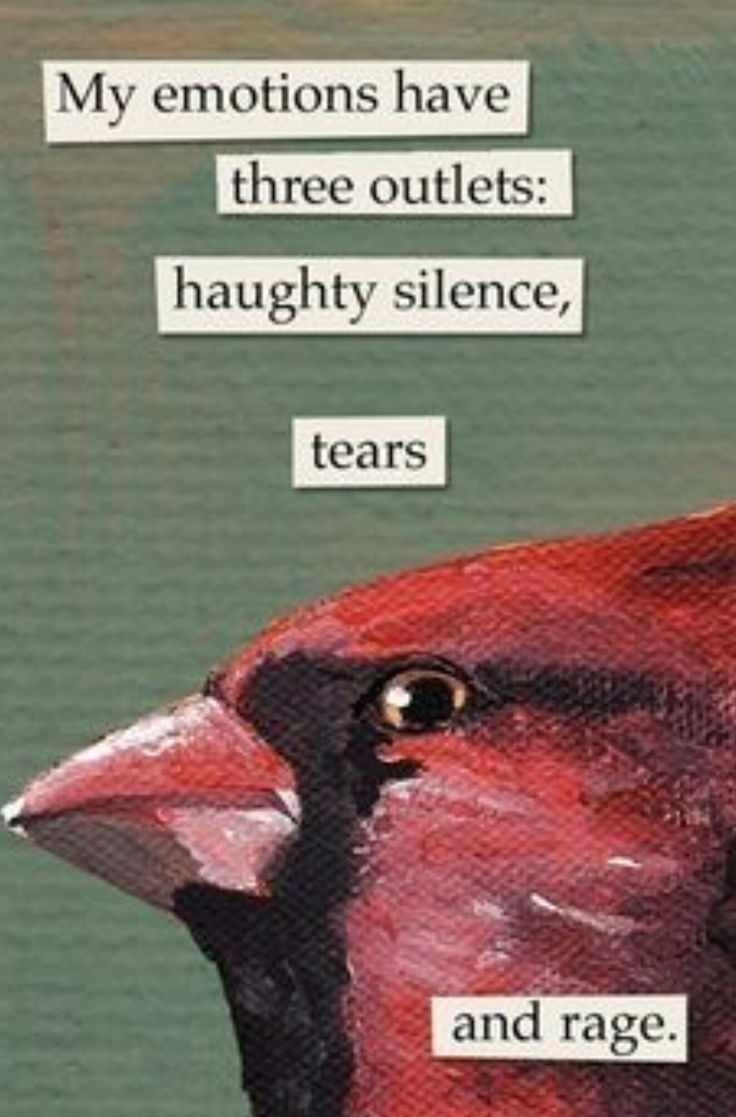 usually these painted birds w text go on my meme board but this ones goin on my me board