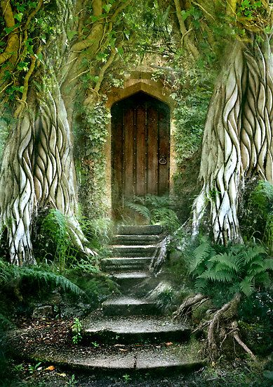 So need to enter in!! You coming? (Source: sha-lom, via the-bodhi-tree)