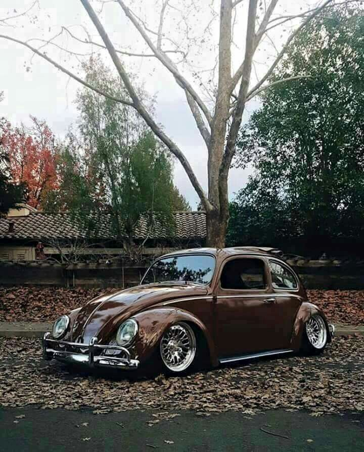 VW Fusca Beetle mine was just white Pinterest