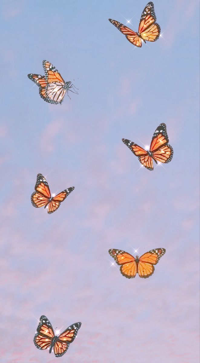 Pin On Hot Beauty Butterfly Wallpaper Iphone Butterfly Wallpaper Cute Patterns Wallpaper