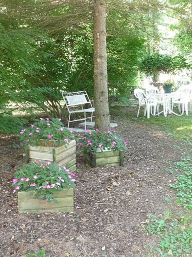 We have a high space under a pine tree on a shady side of our house a little bench like this - Trees for shade in small spaces concept ...