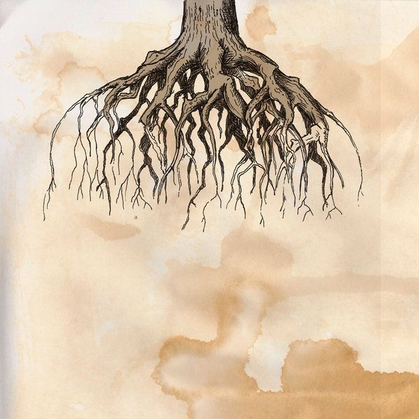 Oak Tree With Roots Tattoo: 17 Best Images About Painting Inspiration