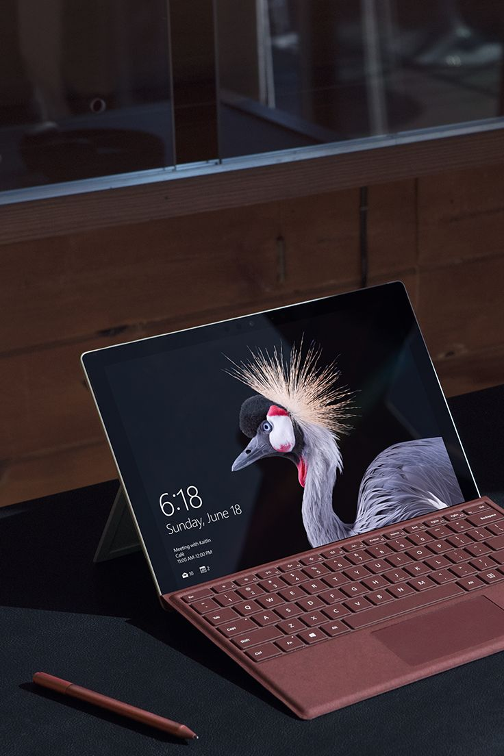 Style staples of the season: The new Surface Pro with the new Microsoft Surface Pro Signature Type Cover and the new Microsoft Surface Arc Mouse in Burgundy.