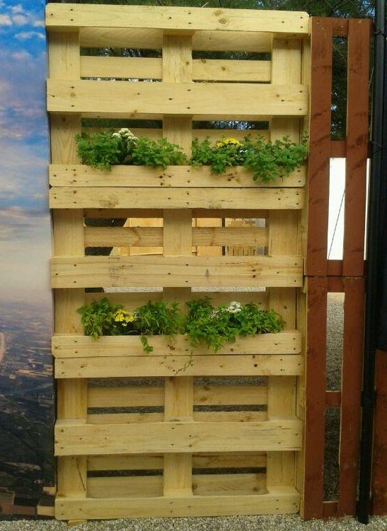 Jard n vertical paredes con plantas todo con palets - Forrar pared con palets ...