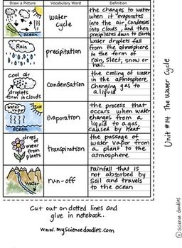 THE WATER CYCLE FOLDABLE PLUS VOCABULARY SHEETS, FREE BY SCIENCE DOODLES - TeachersPayTeachers.com