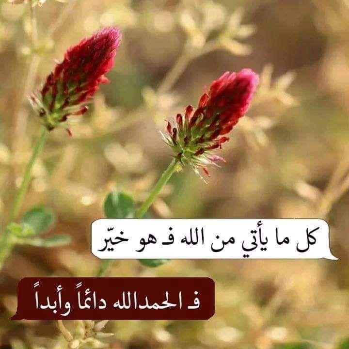 خواطر صباحية دينية Islamic Pictures Words Quotes Quran