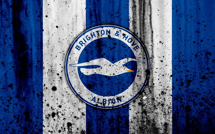 Best 25+ Brighton & Hove Albion Ideas On Pinterest
