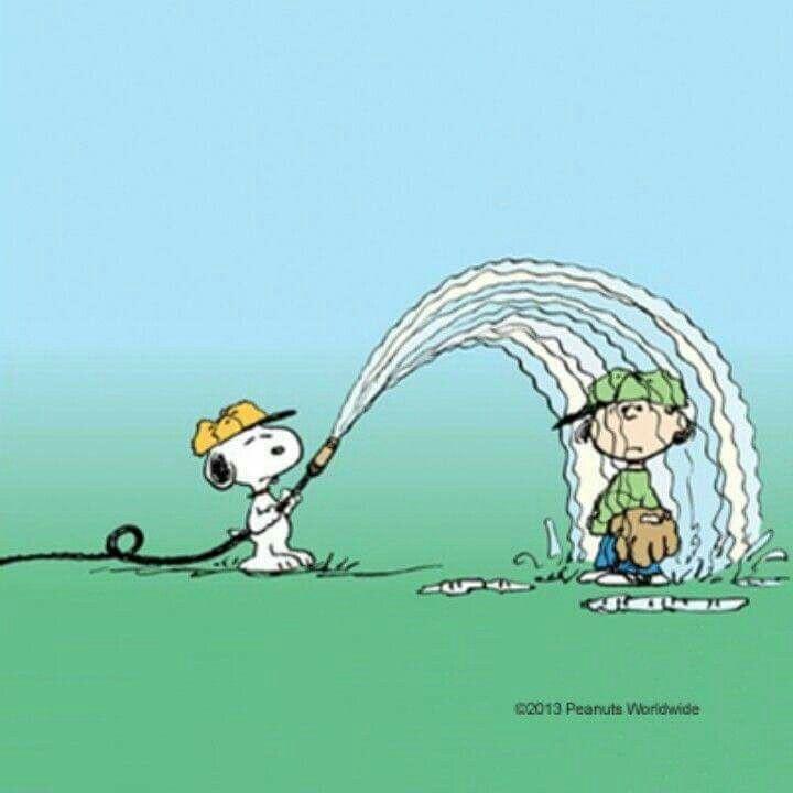 Cool down a little..!