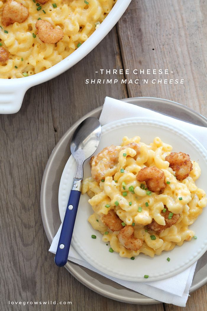 Three Cheese Shrimp Macaroni and Cheese - Creamy, cheesy comfort food made with three different cheeses and little bites of popcorn shrimp! | LoveGrowsWild.com