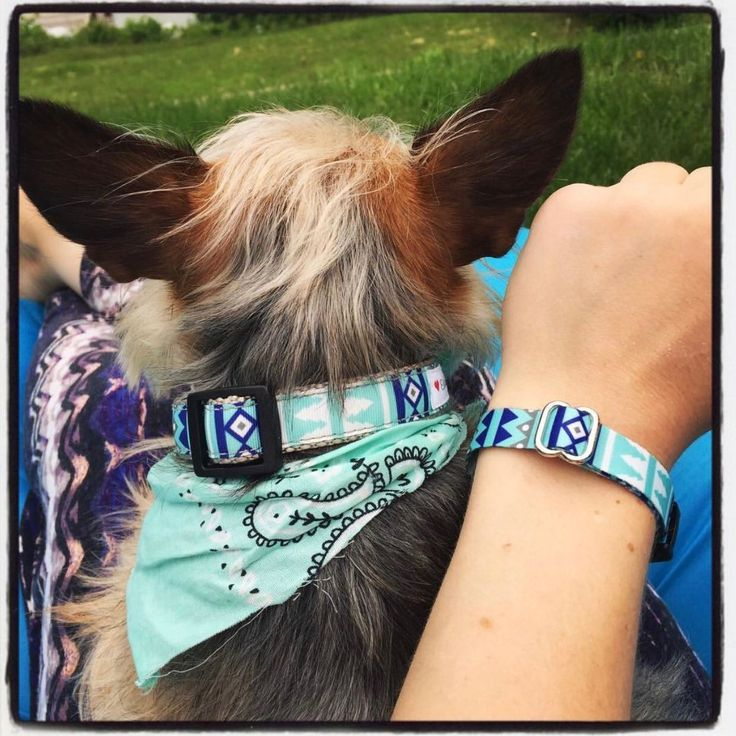 I love seeing happy customers with their matching Furiendship Bracelet and Dog Collar!!