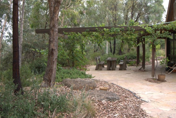 1000+ Ideas About Native Gardens On Pinterest