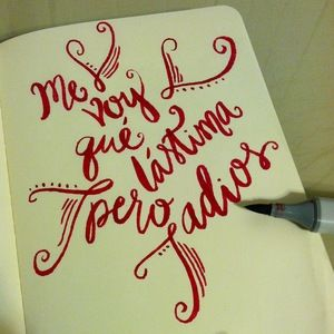 me voy, que lastima, pero adios//julieta venegas//hand lettering//emilyfulkerdesign